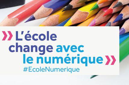 223 écoles ultramarines sélectionnées dans le cadre de l'appel à projets « Label Écoles numériques 2020 » !