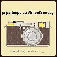 Silent Day #34