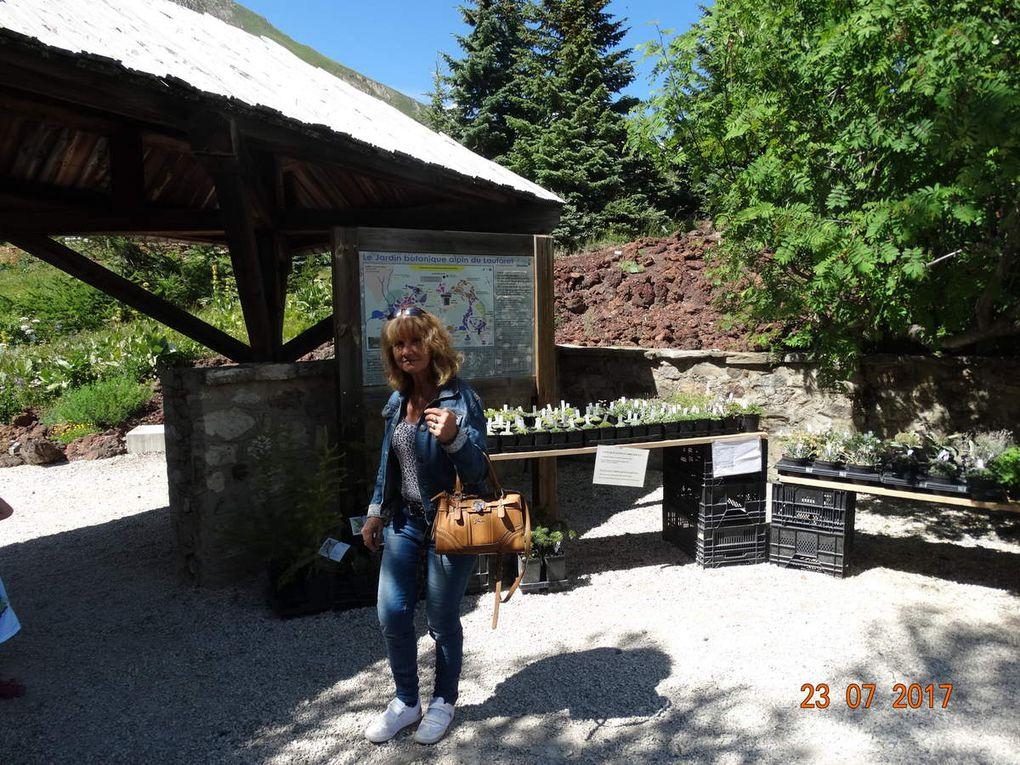 Le jardin du col du Lautaret