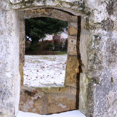 Decouvrons cette niche, sous le froid de décembre