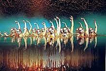 Un petit entrainement à la nage synchronisée avec le cirque du soleil