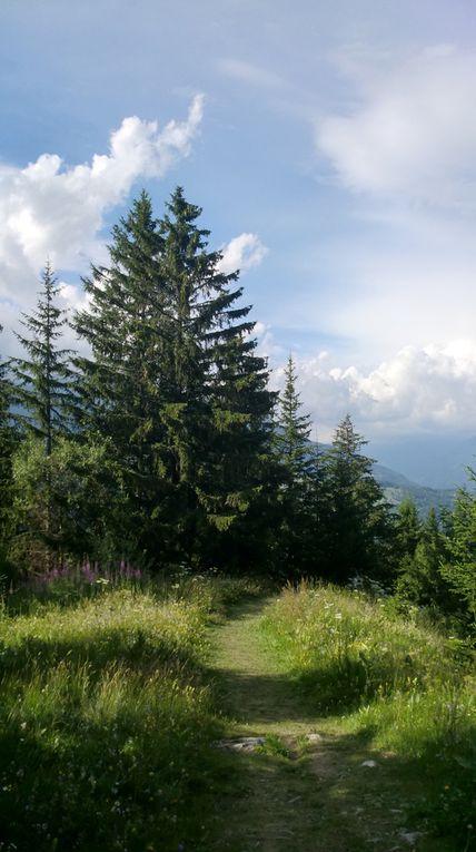 En quittant le Prariond, le sentier contourne une belle arête puis s'enfonce dans la forêt.