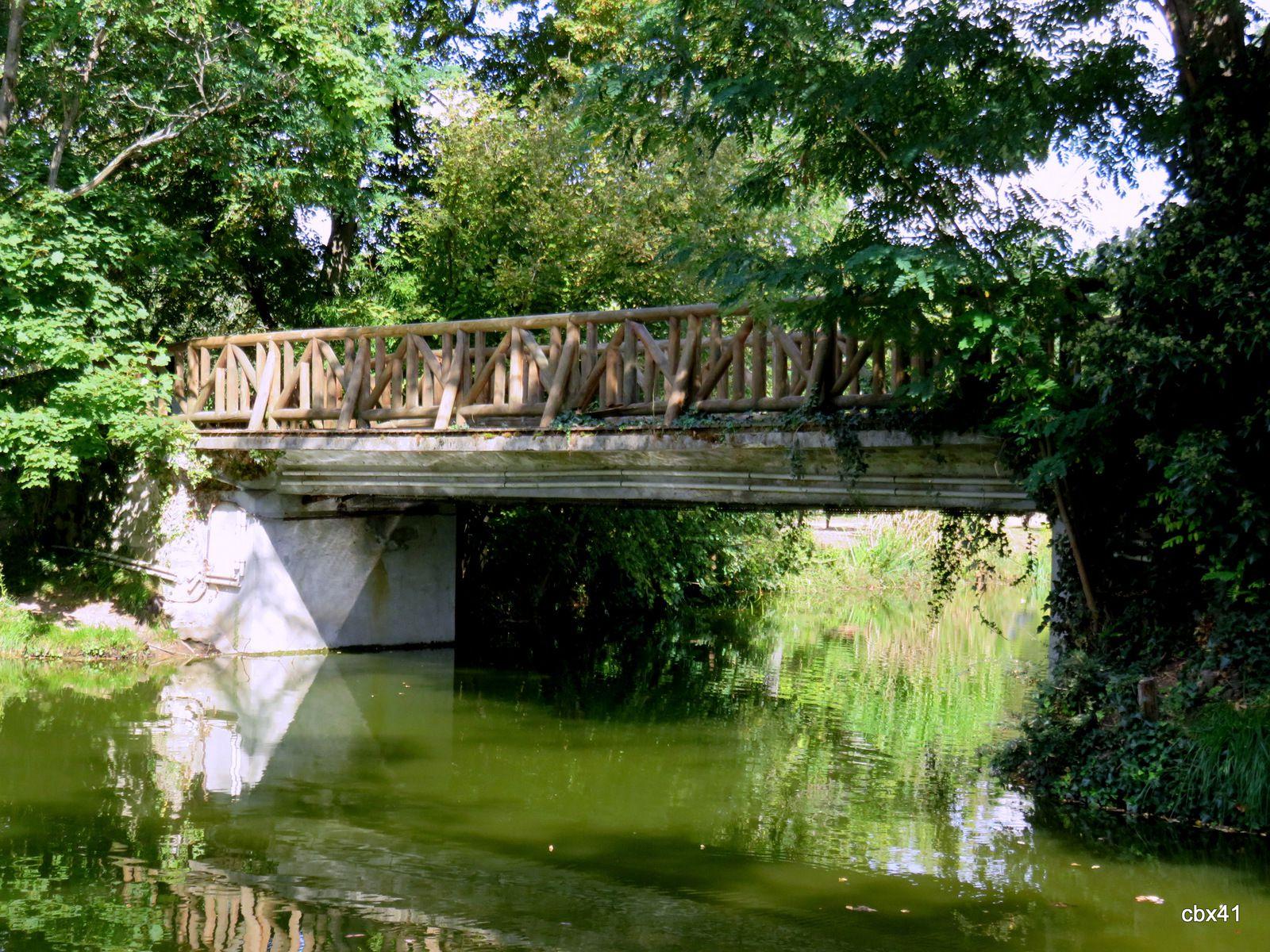 Lac des Ibis, Le Vésinet (Yvelines), Arbres et petits ponts