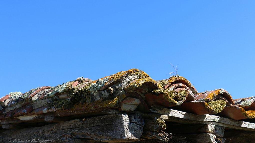 Visite d'une vieille grange en torchis dans le Gers