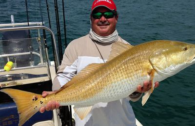 7 Lesser Known Fish You May Encounter Aboard Cocoa Beach Fishing Charters