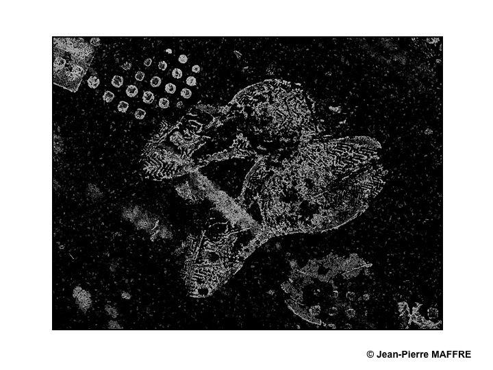 Quels liens trouver entre les traces laissées par les premiers hommes, l'empreinte du premier pas sur la lune et celles de nos contemporains ?