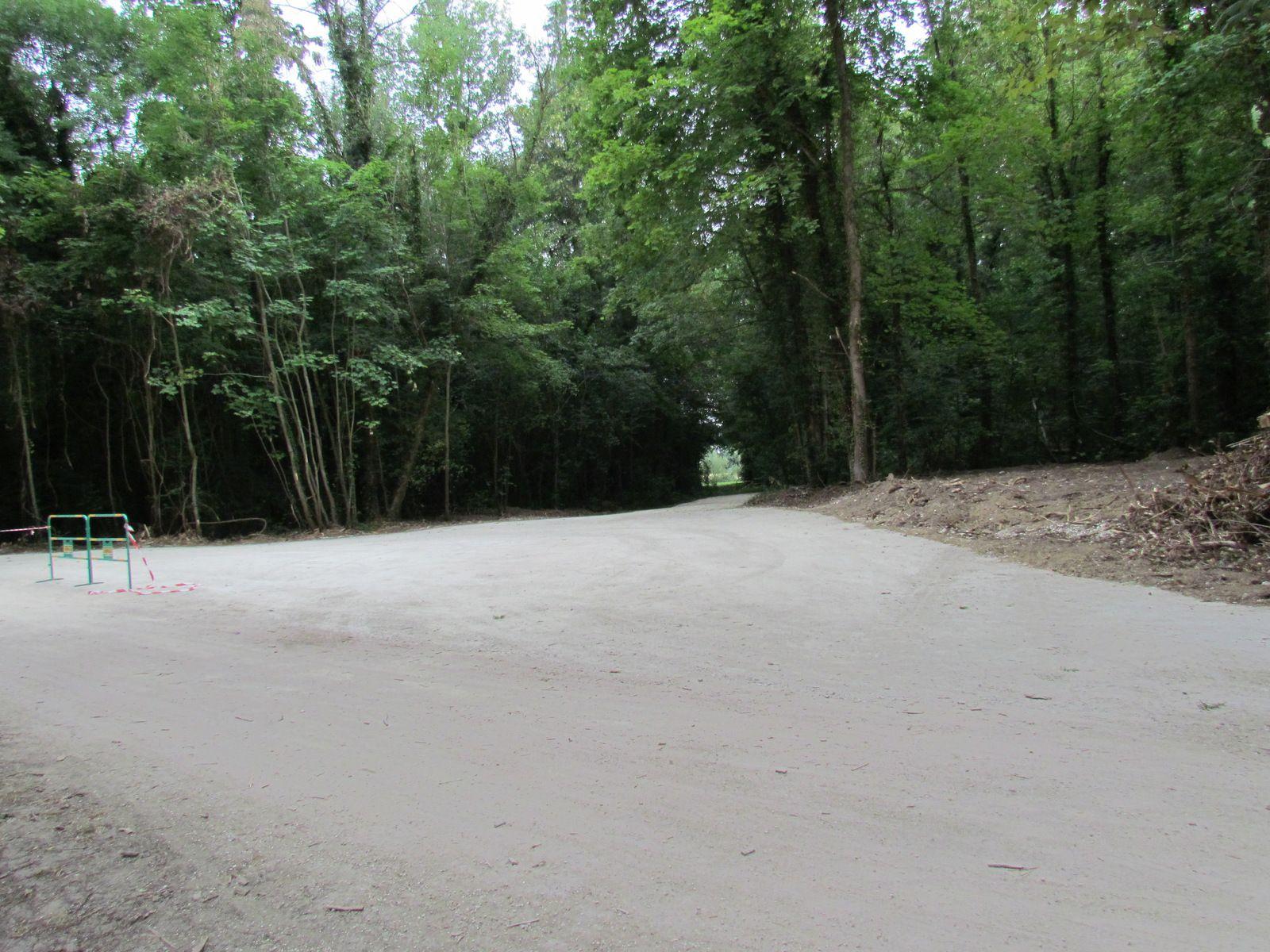 Forêt du Marais Brebis de Chelles entre le Lac et La Belle-île de Vaires