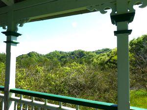 Kôbé : Le mont Rokkô et son très beau parc Shinrinshokubutsuèn 森林植物園