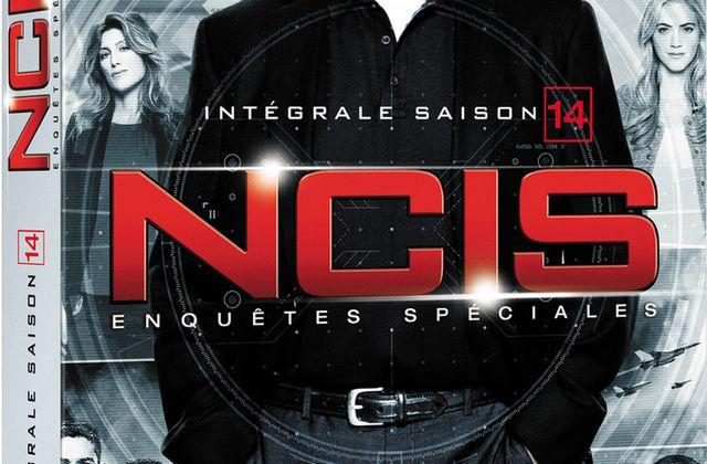 NCIS : Enquêtes Spéciales - Saison 14 (DVD)