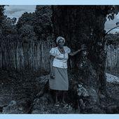 Le coronavirus dans les communautés afro-brésiliennes - coco Magnanville