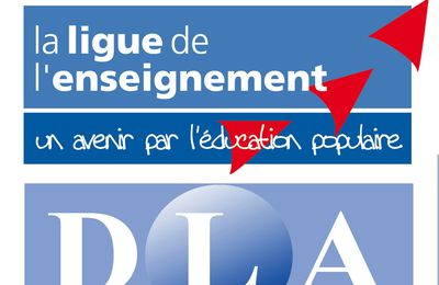 DLA - Accompagnement Collectif - CROWDFUNDING : 16 novembre 2016