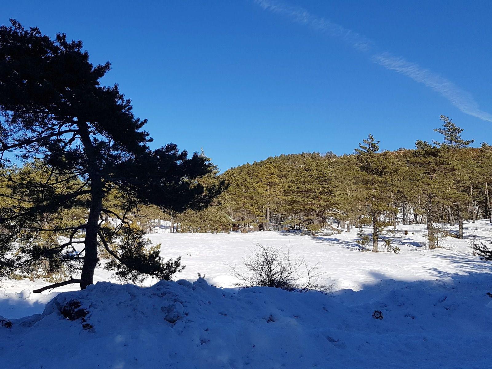 Emilie-Lise à la neige - M&T décembre 2004