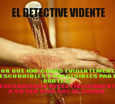 EL DETECTIVE VIDENTE,POR QUE HAY COSAS EVIDENTEMENTE DESCUBRIBLES Y PREDESIBLES PARTE 6 DESCUBRIENDO DETECTIVEZCAMENTE A UN SER VIVO QUE SE QUEMO