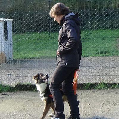 Promener son chien est INDISPENSABLE