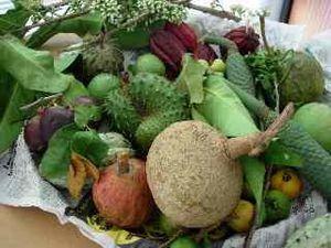 source: Fruits Lontan (alain.martel.pagesperso_orange.fr) et légumes Lontan (CIRAD)