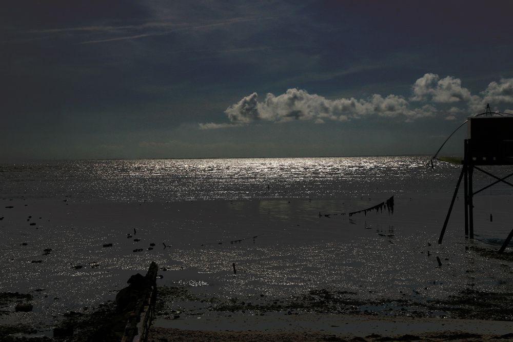 Album - Les Pecheries Atlantique
