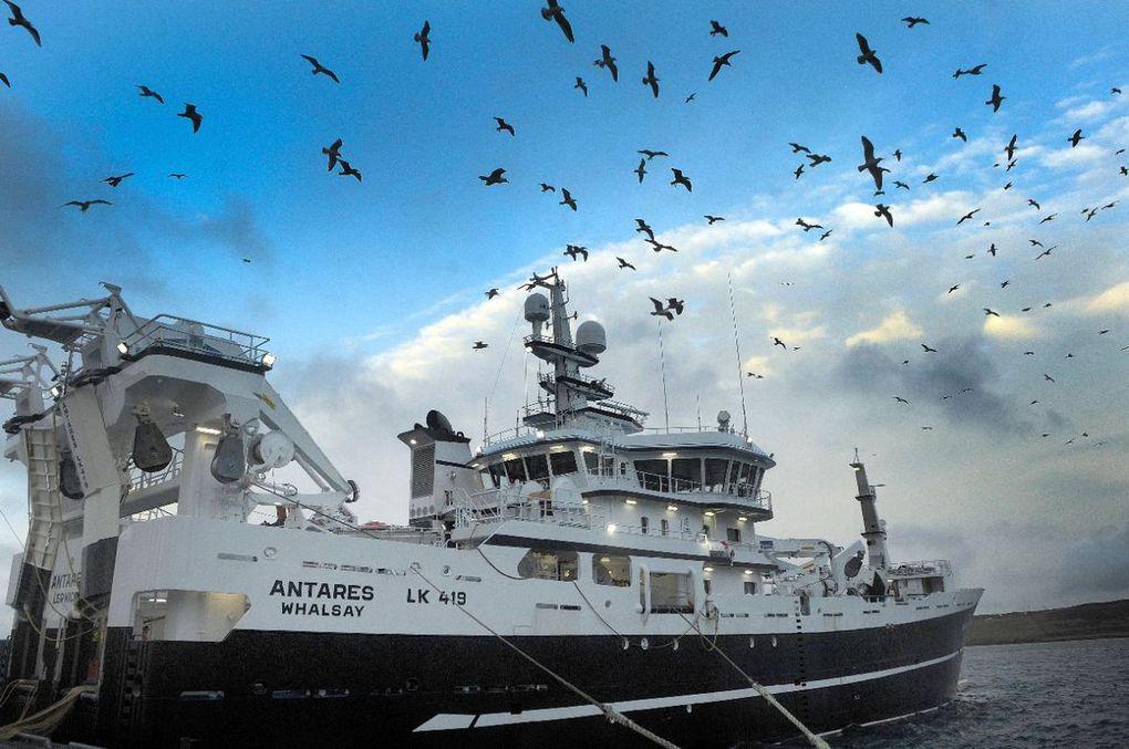Brexit: Londres dénonce un accord de pêche