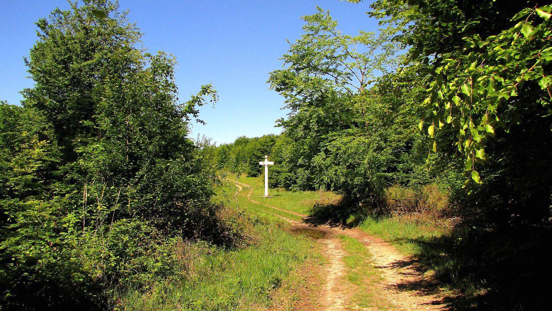 le carrefour du Mont Collet