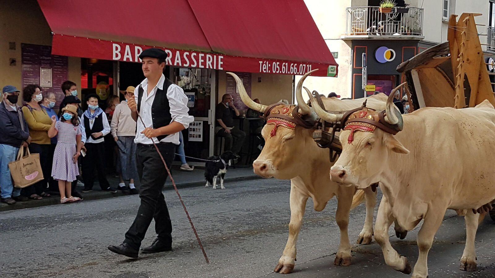 Autrefois le Couserans 2021 - les éleveurs et leurs animaux
