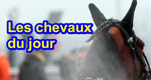 Les chevaux du jour : Dimanche 28 février 2021 à Vincennes