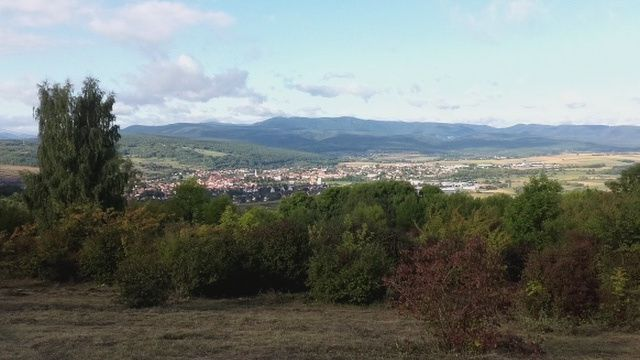 Run In Elsass… Le circuit des chapelles