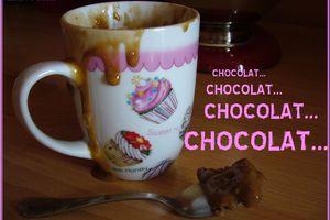 Fondant au chocolat minute (au micro-onde, dans une tasse)