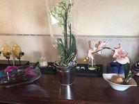 Florajet livraison de fleurs