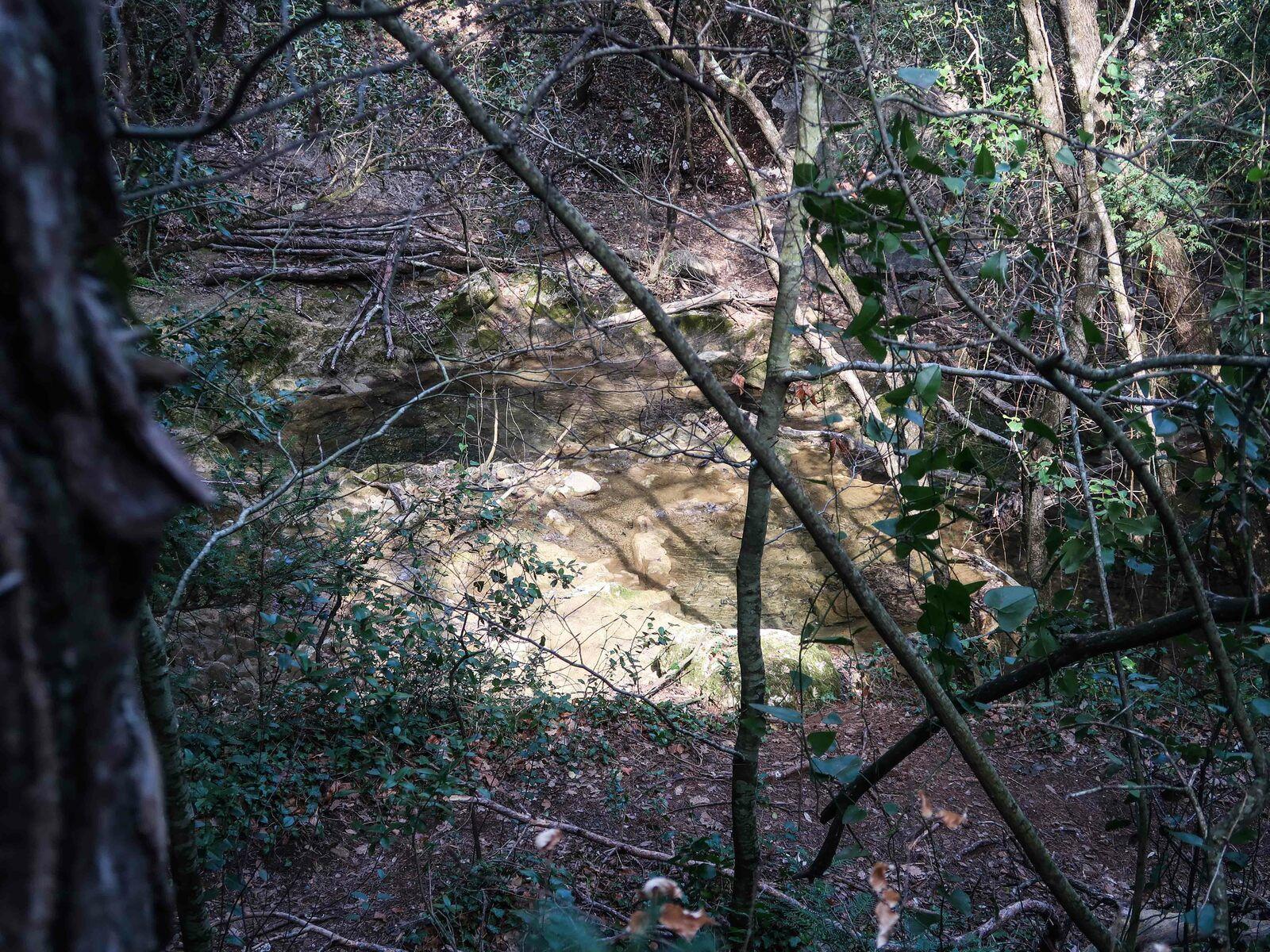L'huveaune sans eau ce n'est plus le même paysage mais le lieu mérite quand même la rando . Merci Gilbert et mamie Agnes pour l'apéro copieux .