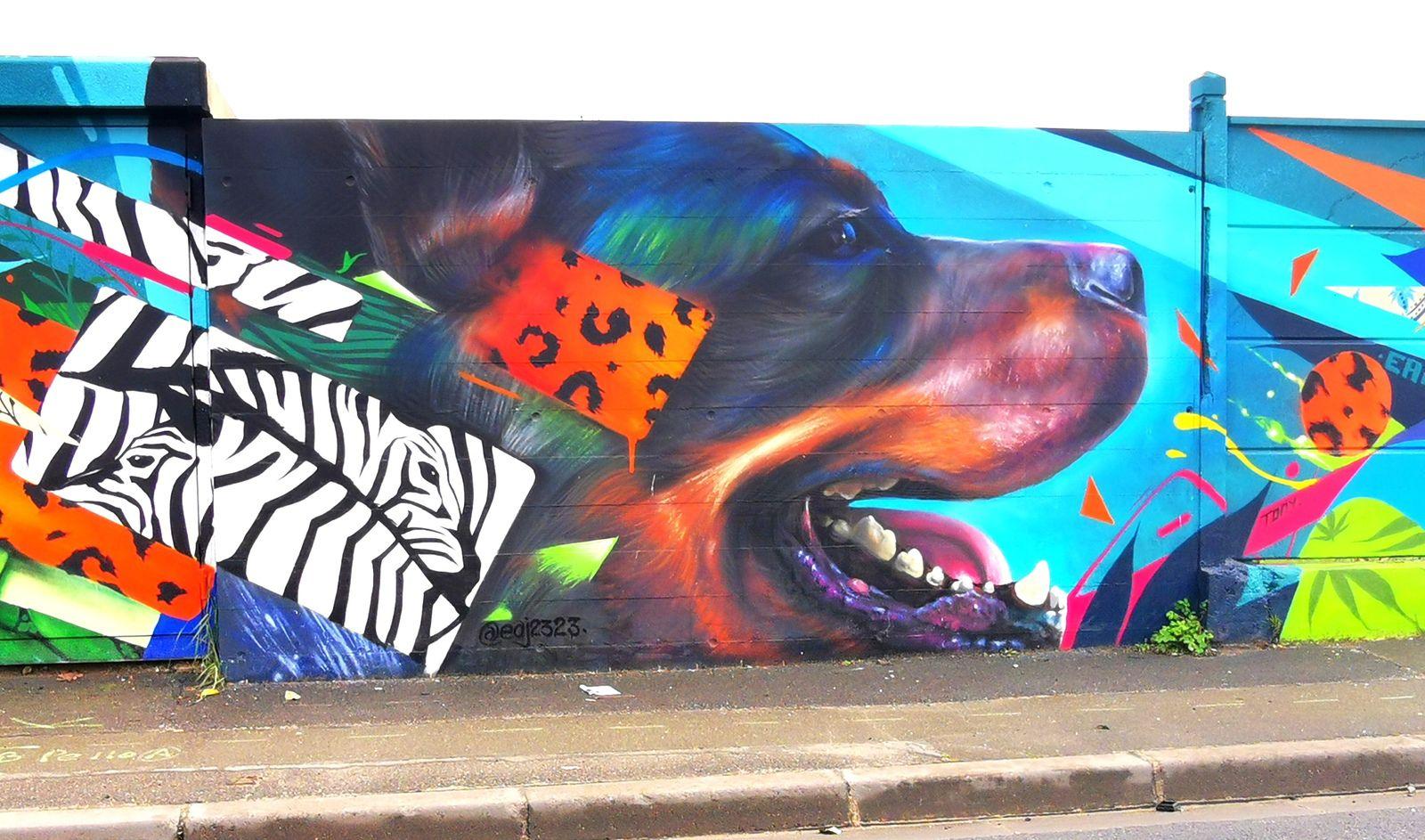 Street art à Bagneux (92)