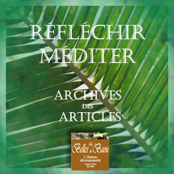 reflechir_mediter_archives_articles_lesbellesdubaou