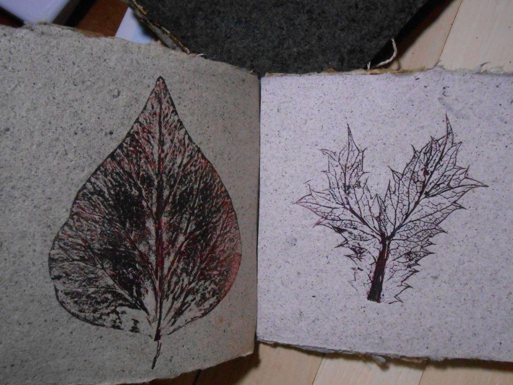 Deux livres un minéral et végétal, l'autre végétal, avec monotypes et linogravures