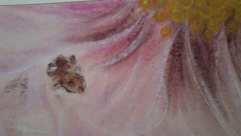 Album - Les-pastels-suite1