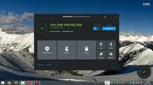 bit defender internet security  2015