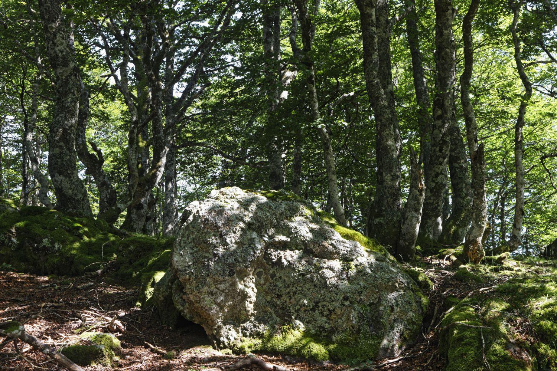 Occabé (Okabé) - Pays Basque