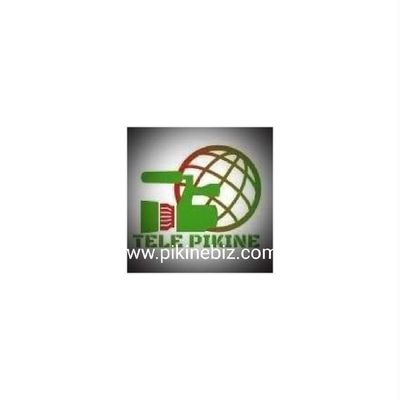 PIKINE BUSINESSES NETWORK
