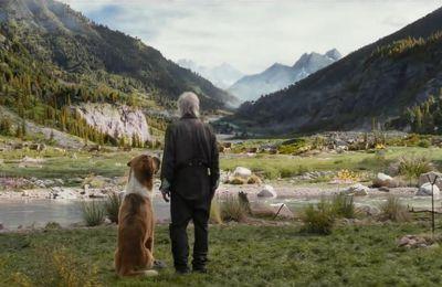 绝境长征《The Call of the Wild》 完整版本(2020年电影-線上看流) ~下载电影完整视频版