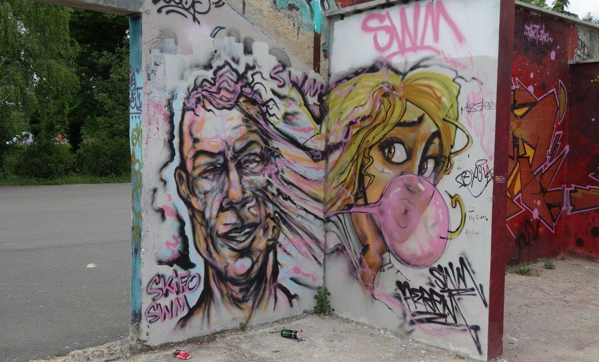Album - Graffitis Vitry sur Seine Tom 012