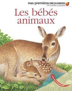 Découvrir et jouer avec les animaux avec Gallimard Découverte.
