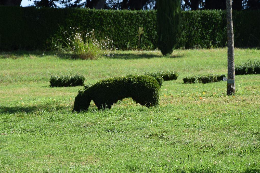 Que la France est belle : le Périgord noir 6- Les jardins du manoir d'Eyrignac