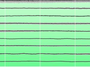 Avertissement de tsunami sur l'autoroute - Niveau relatif de la mer / NZ tsunami gauge network; un clic pour agrandir