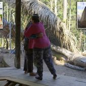 Mother, 52, swaps Greenwich for her husband's remote Amazonian