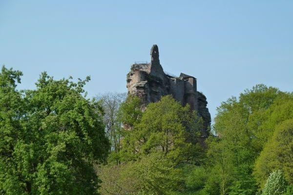 Randonnée dans les Vosges du Nord. 6 km - 6/...