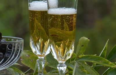 Notre cocktail maison, Sureau-Armagnac-Vin effervescent