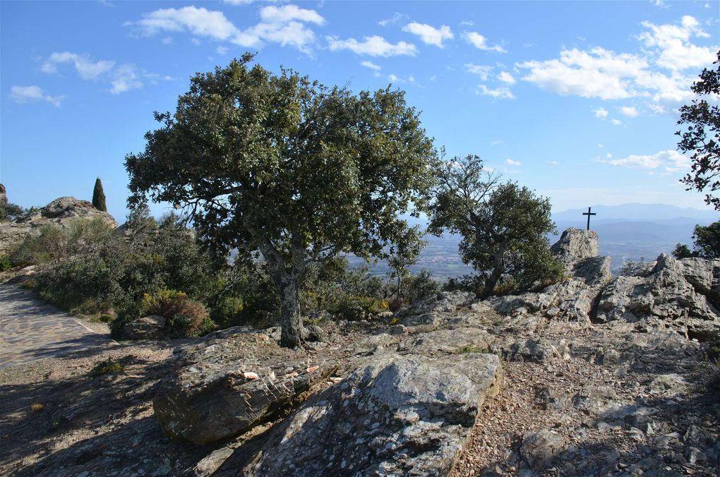 Roussillon, Pays Catalan : Une terre, une histoire, des couleurs...