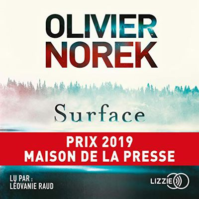 Surface - Olivier Norek (audio)