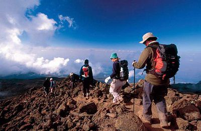The Thing to Consider before Going for Kilimanjaro Trekking Tours