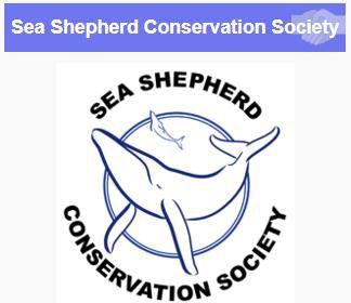 Article de l'ONG Sea Shepherd