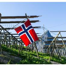 Les Norvégiens voient des avantages à l'édition du génome pour les produits alimentaires