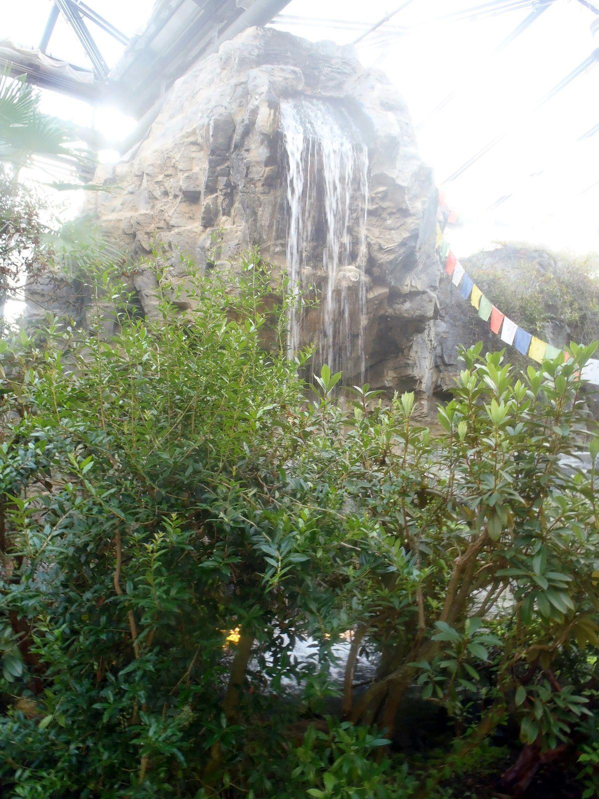 """botanika"" im Rhododendron-Park"