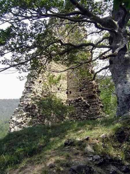Diaporama château de Nantes-en-Ratier